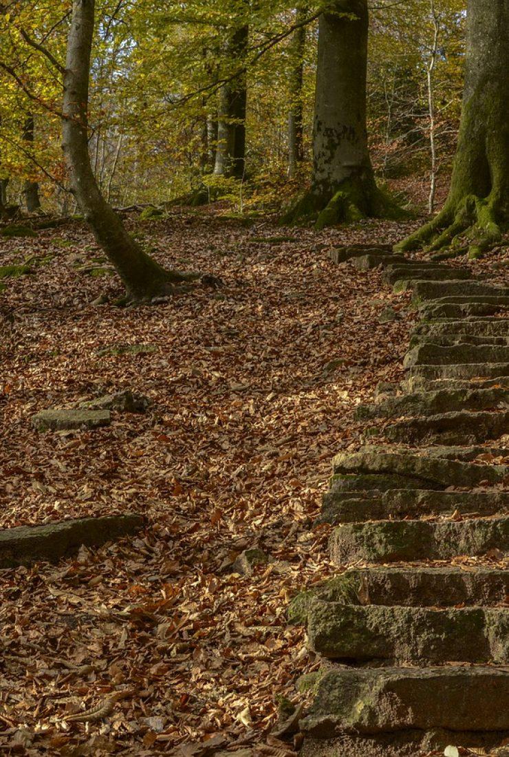 stairs, away, gradually